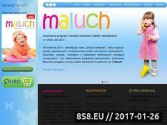 Miniaturka domeny emaluch.com.pl