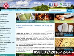 Miniaturka domeny enji.pl