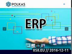 Miniaturka domeny www.erp-polkas.pl