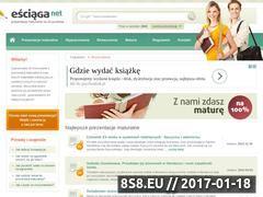Miniaturka domeny esciaga.net