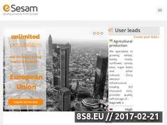 Miniaturka Sprzedaż produktów w sklepie za granicę oraz eksport (esesam.eu)