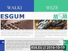 Miniaturka domeny www.esgum.com.pl