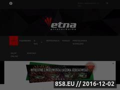 Miniaturka domeny etnafajerwerki.pl