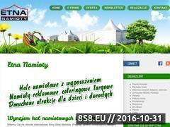 Miniaturka domeny etnanamioty.pl