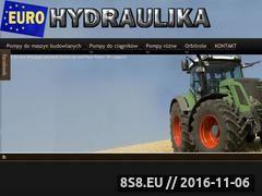Miniaturka domeny www.euro-hydraulika.pl