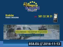 Miniaturka domeny www.eurohol.pl