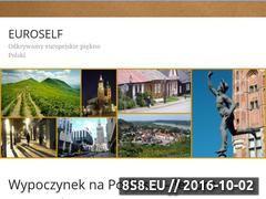 Miniaturka domeny www.euroselfstorage.pl