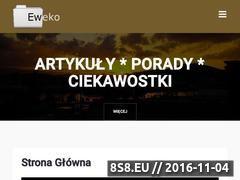 Miniaturka domeny eweko.pl