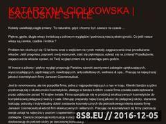 Miniaturka domeny www.exclusivestyle.pl