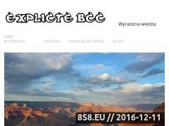 Miniaturka domeny www.explicite-bcc.pl