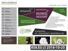 Miniaturka domeny www.fabisz-stefanek.pl