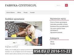 Miniaturka domeny www.fabryka-czystosci.pl