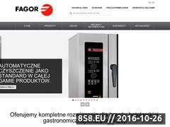 Miniaturka domeny www.fagorindustrial.pl
