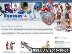 Miniaturka domeny www.fantom-fw.com.pl