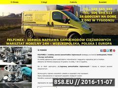 Miniaturka domeny felpimex.pl