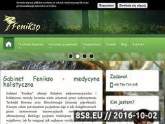 Miniaturka domeny fenikso.pl