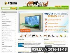 Miniaturka domeny fermo.pl