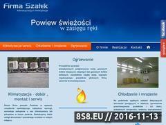 Miniaturka domeny www.firmaszalek.pl