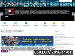 Miniaturka domeny firmoweinfo.pl