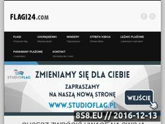 Miniaturka domeny flagi24.com