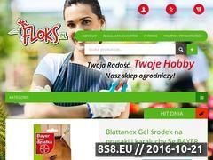 Miniaturka domeny floks.pl