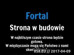 Miniaturka domeny www.fortal.pl