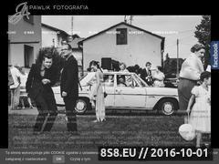 Miniaturka domeny www.fotopawlik.pl