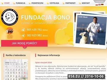 Zrzut strony Fundacja Bono