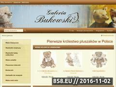 Miniaturka domeny galeriabukowski.pl