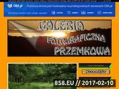Miniaturka domeny galeriaprzemkowa.cba.pl
