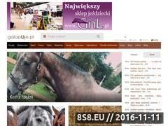 Miniaturka galopuje.pl (Wiadomości o jeździectwie)