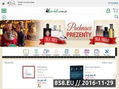 Miniaturka domeny www.gandalf.com.pl