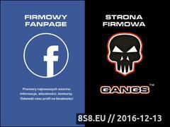 Miniaturka domeny gangs.pl