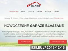 Miniaturka domeny www.garazeblaszane.com
