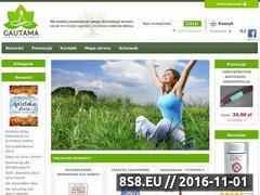 Miniaturka domeny www.gautama.pl