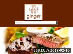 Miniaturka domeny www.ginger.net.pl