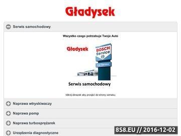 Zrzut strony Urządzenia diagnostyczne, ESI[tronic], serwis urządzeń Gładysek Kraków