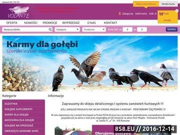 Zrzut strony Hurtownia, sklep dla gołębi - Picaldi