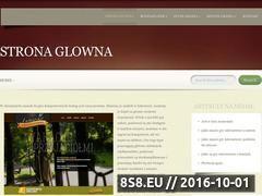Miniaturka domeny www.grydarmoweonline.pl