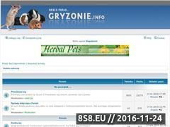 Miniaturka domeny www.gryzonie.info