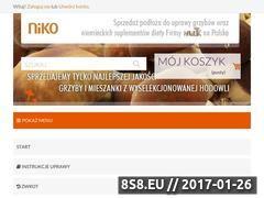 Miniaturka domeny www.grzybowysklep.pl