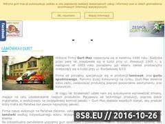 Miniaturka domeny gurt-max.pl