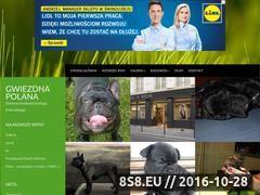 Miniaturka domeny www.gwiezdna-polana.cba.pl
