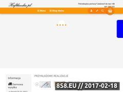 Miniaturka domeny www.haftlandia.pl