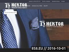 Miniaturka domeny hektor.com.pl