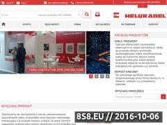 Miniaturka domeny www.helukabel.pl
