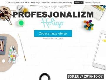 Zrzut strony Strony internetowe i pozycjonowanie WWW Olsztyn