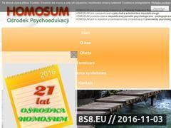 Miniaturka domeny homosum.pl