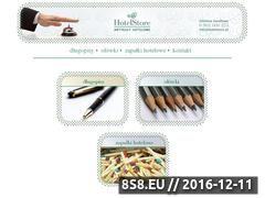 Miniaturka domeny www.hotelstore.pl