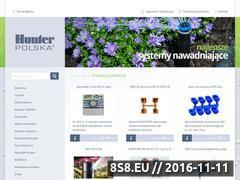 Miniaturka domeny www.hunterpolska.pl